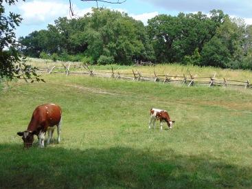 Livestock (2)