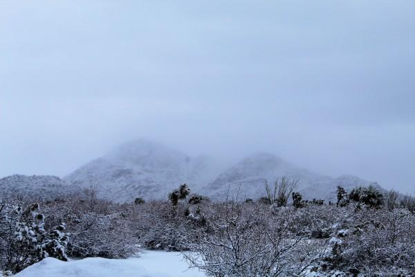 A desert snowstorm (3)